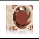 Noctua NF-A4x20 FLX Computer case Fan 4 cm Beige, Brown