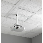 Chief CMS492C Ceiling Stainless steel,White project mount