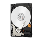 Western Digital WD Blue 750GB + WD Care Extended