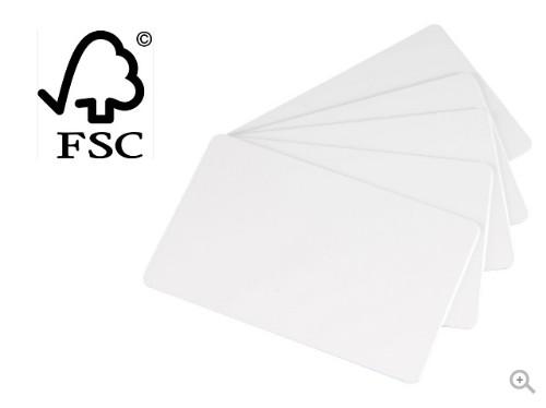 Evolis C2501 card stock/construction paper 500 sheets