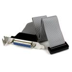 StarTech.com Low-Profile 40cm Parallelle Poort Verloopkabel met Bracket DB25 (F) naar IDC26