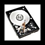 Hewlett Packard Enterprise 459315-001 250GB Serial ATA internal hard drive