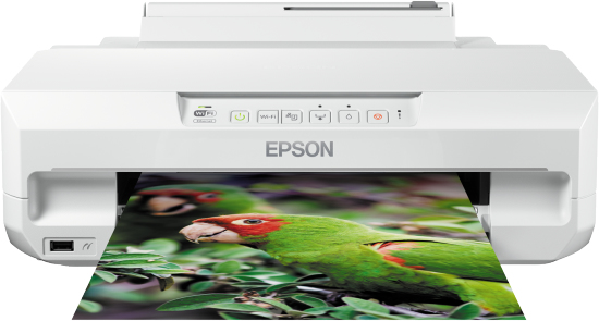 Epson Expression Photo XP-55 C11CD36401