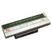 Zebra P1004236 cabeza de impresora Transferencia térmica