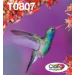 Epson Hummingbird Multipack 6 colores T0807 Claria Photographic Ink Embalaje Envío Fácil