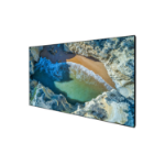 "Celexon DELUXX Cinema - SlimFrame 203cm x 114cm - 92"" Diag - 4K Pro Flex MWHT Fixed Frame Screen"