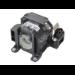 MicroLamp ML10290 170W projector lamp