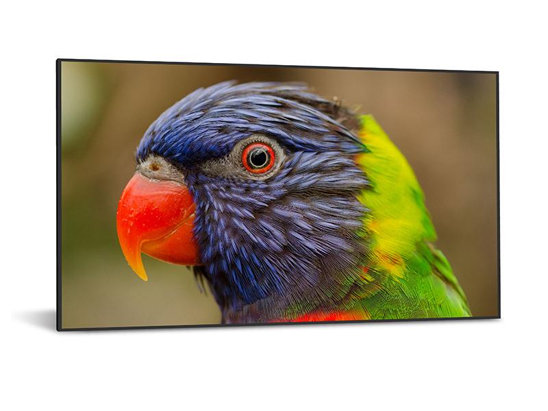"DynaScan DS752LR4 signage display 190.5 cm (75"") LCD 4K Ultra HD Black"