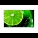 "NEC E series MultiSync E558 Digital signage flat panel 138.7 cm (54.6"") LCD 4K Ultra HD Black"