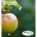Epson Apple Multipack 4-colours T129 EasyMail