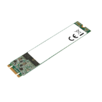 Intenso Top Performance M.2 1000 GB Serial ATA III 3D NAND