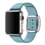 """Apple Watch 38mm Stainless Steel Case with Blue Jay Modern Buckle 1.32"""" OLED Stainless steel"""