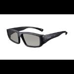 Epson 3D Glasses (Passive for Adult, x5) - ELPGS02A
