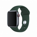 BeHello BEHPRMSWS006 smartwatch accessory Band Green Silicone