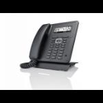 Bintec-elmeg IP620 IP phone Black Wired handset