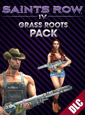 Nexway Act Key/Saints Row IV Grass Roots Pack vídeo juego PC Español