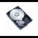 MicroStorage 160GB 7200rpm 160GB Serial ATA internal hard drive