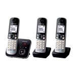 Panasonic KX-TG6823 DECT telephone Black,Silver Caller ID