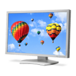 """NEC PA302W computer monitor 30"""" White"""