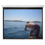 """Sapphire SWS200BV 100"""" 4:3 Black,White projection screen"""