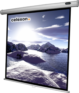 Celexon 1090030 1:1 Black,White projection screen