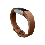 Fitbit FB-163LBBRS Brown
