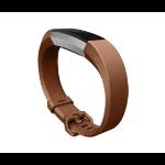 Fitbit FB-163LBBRS Brown
