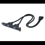 Akasa AK-CBUB17-40BK 0.40m IDC 2 x USB Black USB cable