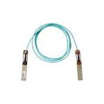 Cisco QSFP-100G-AOC1M= InfiniBand-kabel 1 m