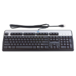 HP USB Standard Keyboard USB QWERTY Spanish