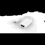 BLUPEAK MINI DISPLAYPORT MALE TO HDMI FEMALE ADAPTER (LIFETIME WARRANTY)