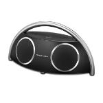 Harman/Kardon Go + Play Wireless 2.0 canales Negro