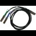 Mellanox Technologies MCP7H50-V001R30 cable de fibra optica 1 m QSFP56 2x QSFP56 Negro