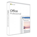 Microsoft Office Professional 2019 Full 1 license(s) English