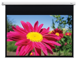 """Optoma DE-1095EGA pantalla de proyección 2,41 m (95"""") 16:10"""