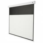 Celexon BATTERY 2.0 - 200cm x 113cm - 16:9 - Battery Professional Plus projection screen