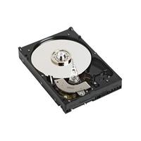 DELL 1TB SATA 1000GB Serial ATA internal hard drive
