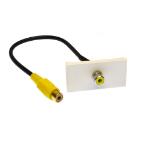Cables Direct ZZ-MOD-1RCAY keystone module