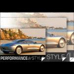 Epson Enhanced Matte Posterboard photo paper