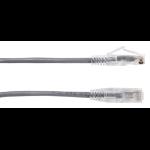 Black Box CAT6 0.6m networking cable Grey U/UTP (UTP)