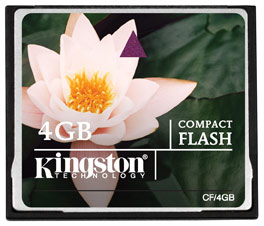 Kingston Technology 4GB CF Card 4GB CompactFlash Flash memory card