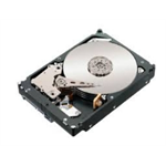 IBM 49Y6004 4000GB Serial ATA III hard disk drive