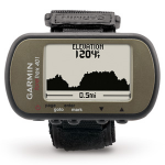 Garmin Foretrex 401 Handheld LCD 87.3g Silver navigator
