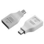 Vision TC-MDPDP MiniDisplayPort DisplayPort White cable interface/gender adapter