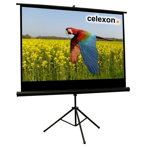 Celexon 1090259 16:9 Black,White projection screen