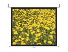 "Optoma DS-3120PMG+ 120"" 4:3 White projection screen"
