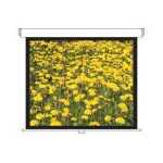 "Optoma DS-3120PMG+ 234cm x 175cm - 4:3 - 120"" Diagonal Manual Screen"