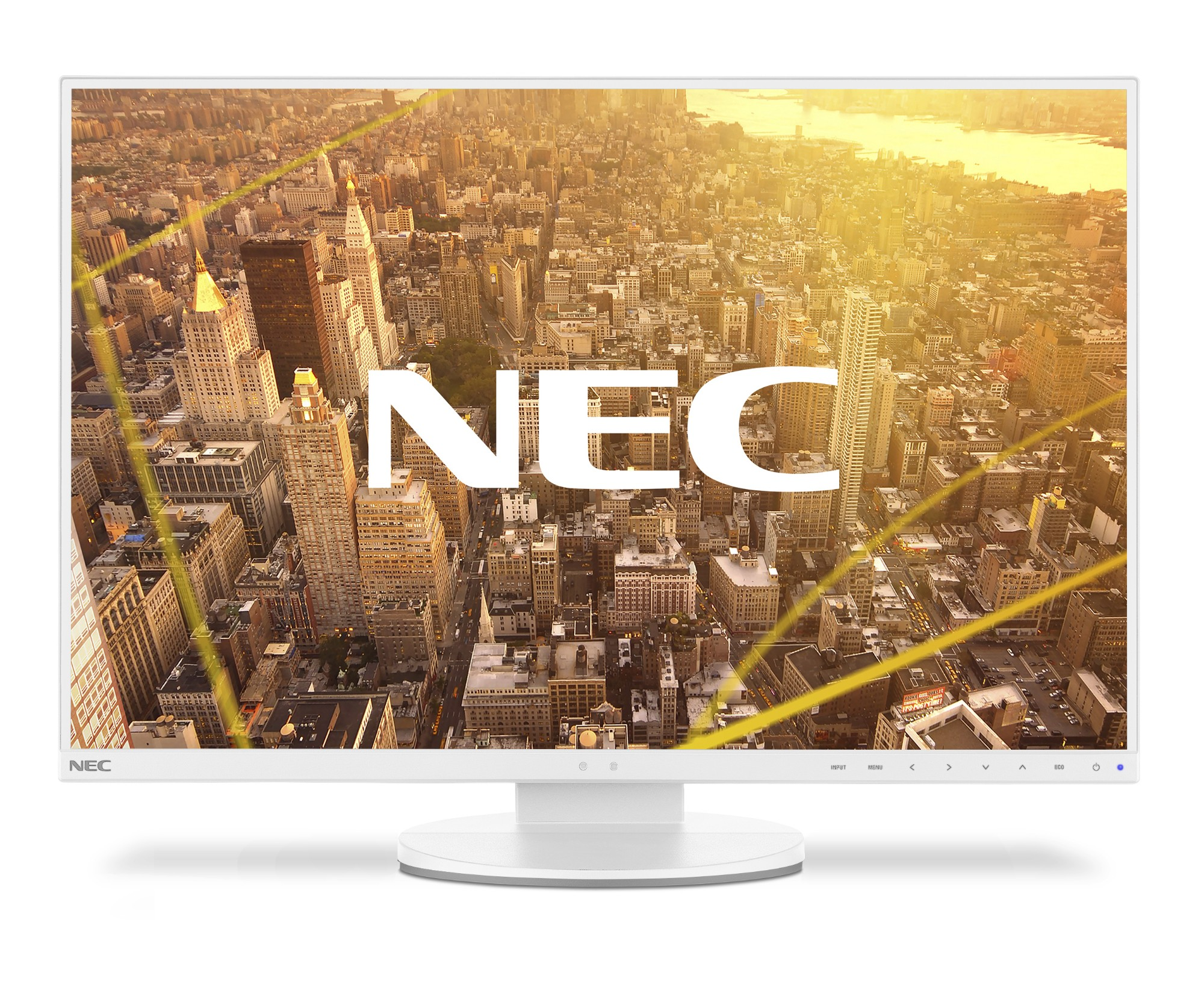 NEC MultiSync EA245WMi-2 61 cm (24