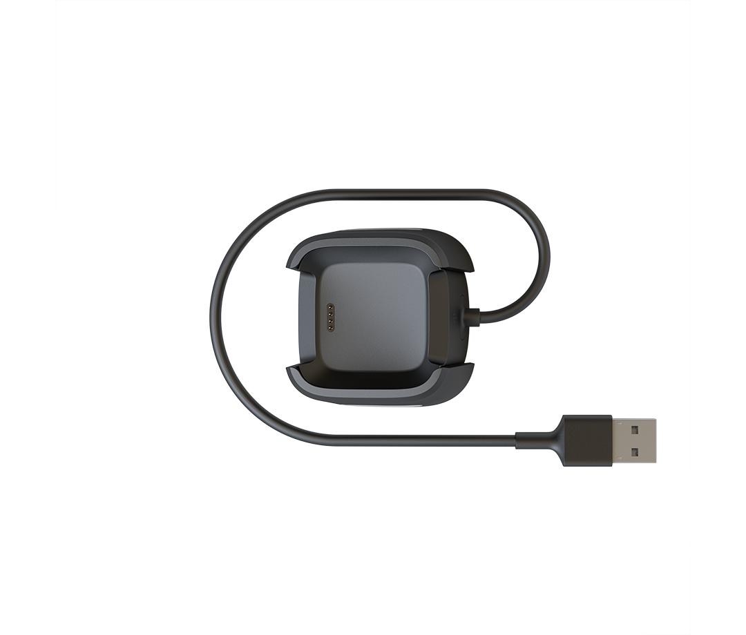 Fitbit FB166RCC accesorio de relojes inteligentes Cable de carga Negro
