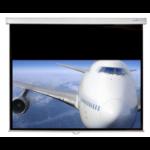 "Sapphire AV SWS270WSF10 projection screen 3.17 m (125"") 4:3"